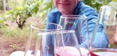 Picnic at the vineyards – Ohrid valley private tour